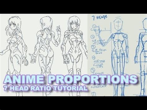 draw anime proportions  heads youtube