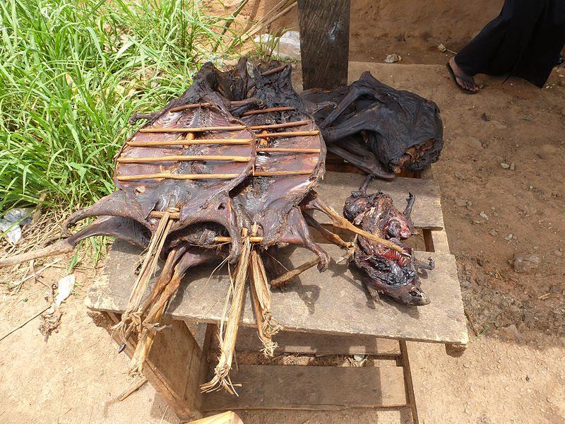 File:Bushmeat - Buschfleisch Ghana.JPG