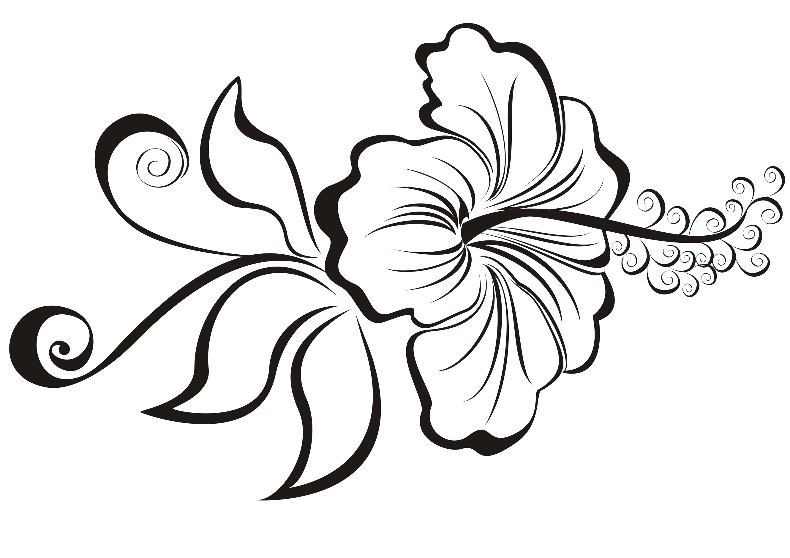 Tribal Flower Drawing At Getdrawingscom Free For Personal Use