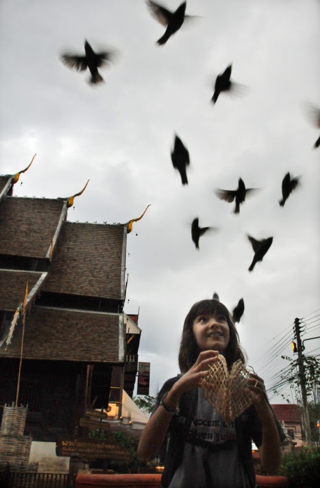 Традиционное выпускание птиц на волю. Тайланд. Фото