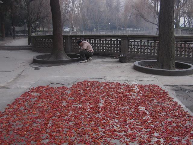 Drying the chilis, Hongguang