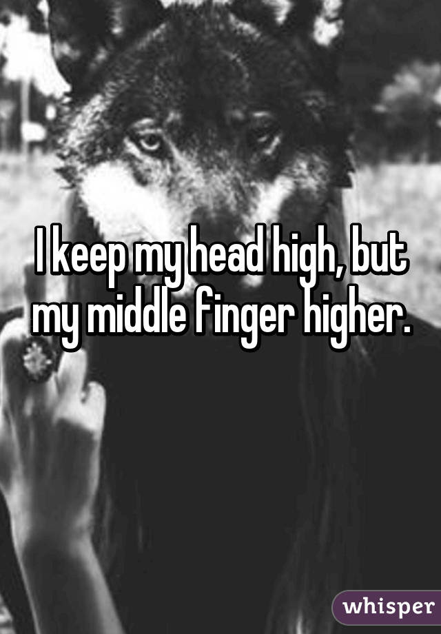 I Keep My Head High But My Middle Finger Higher
