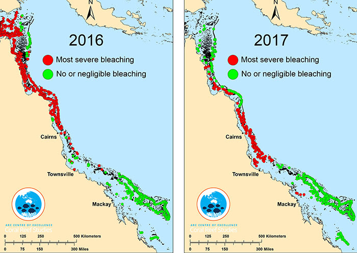 coral-bleaching-event-data