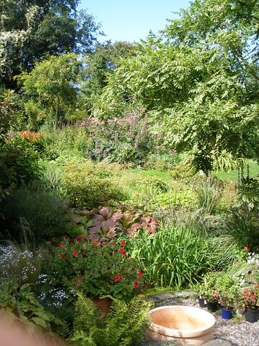 view up the garden from the pnd