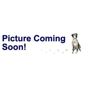 Bead, Swarovski Crystal Stainless Steel Grommets, Crystal Passions®, Blackberry, 14x9.5mm BeCharmed Pearl 4.5mm Hole (5890). Sold Individually