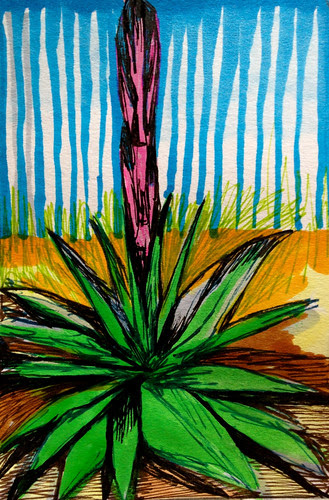 Bloomed yucca by Michelle Schamis