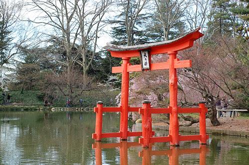 JapanesePond