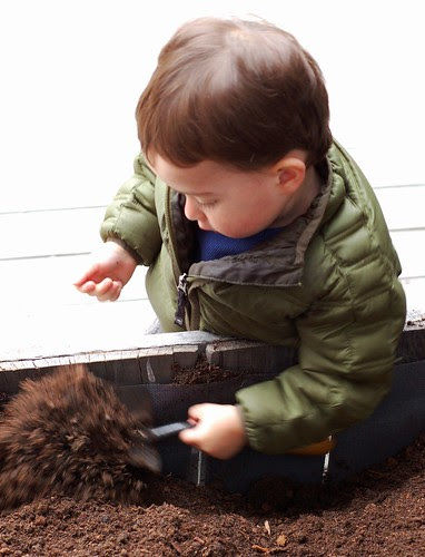 Will really digs dirt by Eve Fox, Garden of Eating blog, copyright 2011
