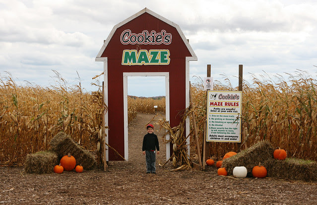 cornmaze-entrance