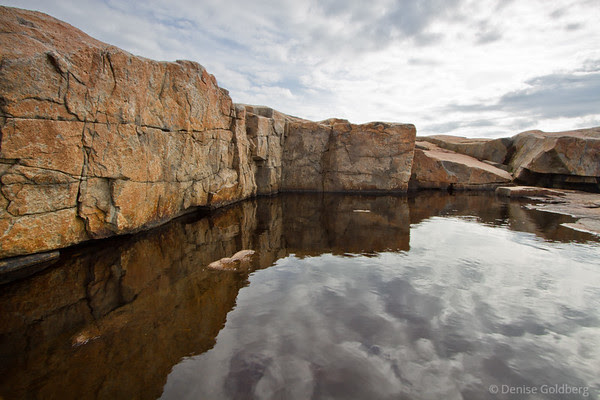 reflections at Schoodic