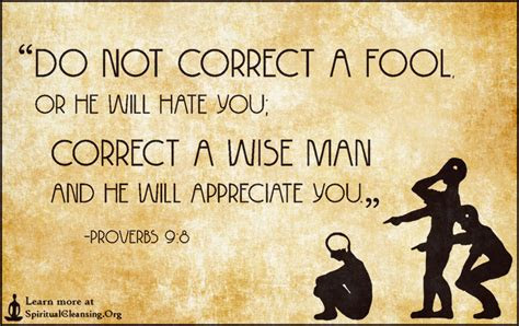 Bible Quotes About Arguing With Fools