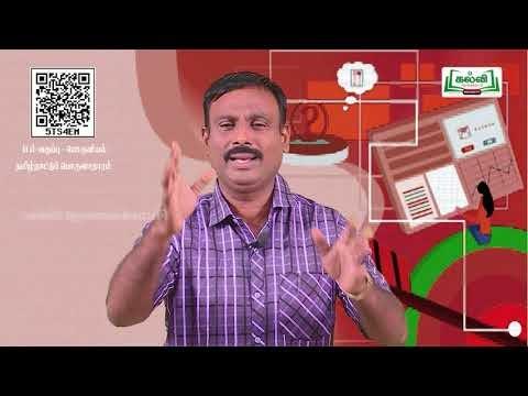 11th Economics தமிழ் நாட்டு பொருளாதாரம் அத்தியாயம் 11 பகுதி 2 Kalvi TV