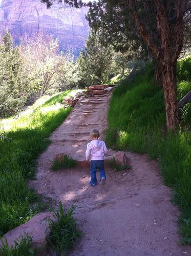 Zion - Watchman Trail