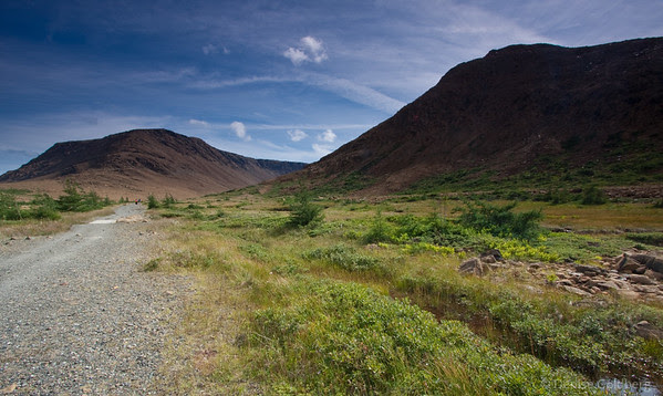 A few favorites of Newfoundland and Nova Scotia