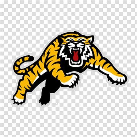 hamilton tiger cats canadian football league bc lions