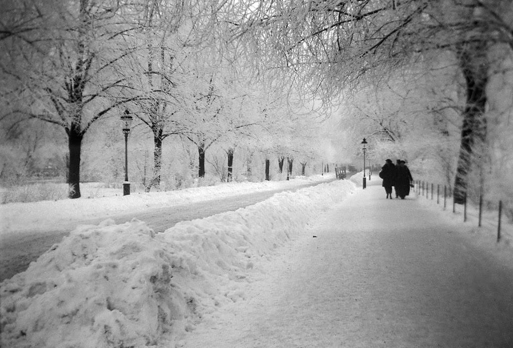 Karlavägen street in snow, Stockholm, Sweden