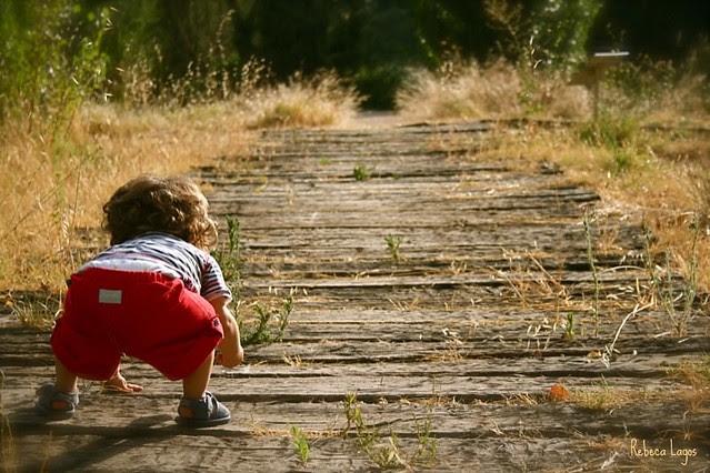 Cosas que aprendo de mis hijos (III) / Things I learn from my children (III)