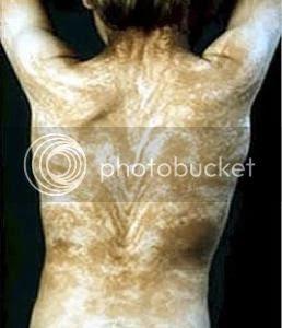 Curiosidades del cuerpo humano
