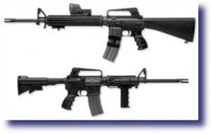 ar 15 m 16 300x190 Gun Control   Is It The Solution?