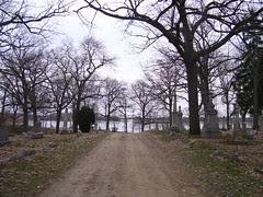 michigan april 2008 026