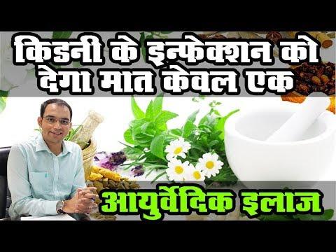 किडनी के इंफेक्शन को देगा मात केवल एक आयुर्वेदिक उपचार, कर्मा आयुर्वेदा डॉ. पुनीत धवन