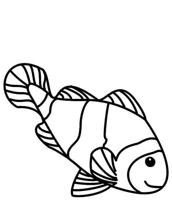 Clownfish Drawing at GetDrawings | Free download