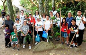 voluntarios.paodeacucarverde