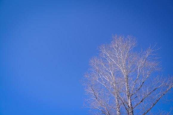 20130304-DSC_9367-blue_sky