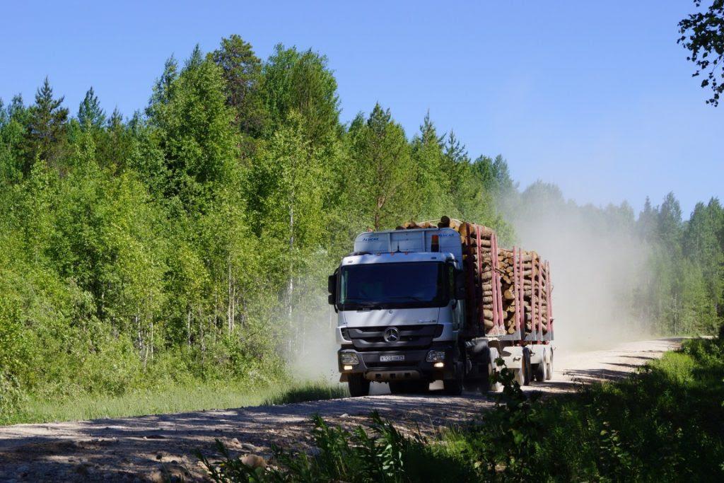 Abertura de estrada catalisa uma pressão sobre a floresta que vai de desmatamento à chegada de espécies invasoras. Foto: Divulgação.