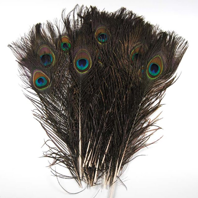 Cheap 20PCS Natural Peacock Eyed Sticks For Fly Tying Streamer Nymphs Wet Flies Fishing Lure Bait DIY Material RECOMMENDED H2 Buy SPECIAL PRICE LIMITED
