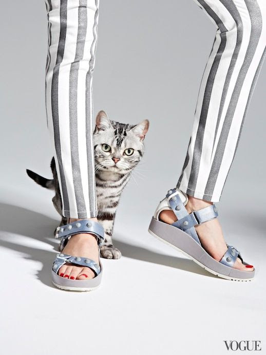 Le Fashion Blog Cats Kittens And Flats Proenza Schouler Silver Sandals Via Vogue photo Le-Fashion-Blog-Cats-And-Flats-Balenciaga-Studded-Flat-Leather-Sandal-Via-Vogue.jpg