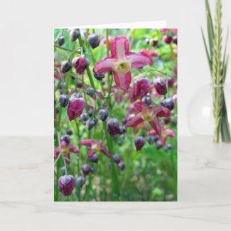 Epimedium Flowers card