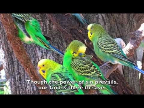 Glory And Praise To Our God Lyrics - Dan Schutte