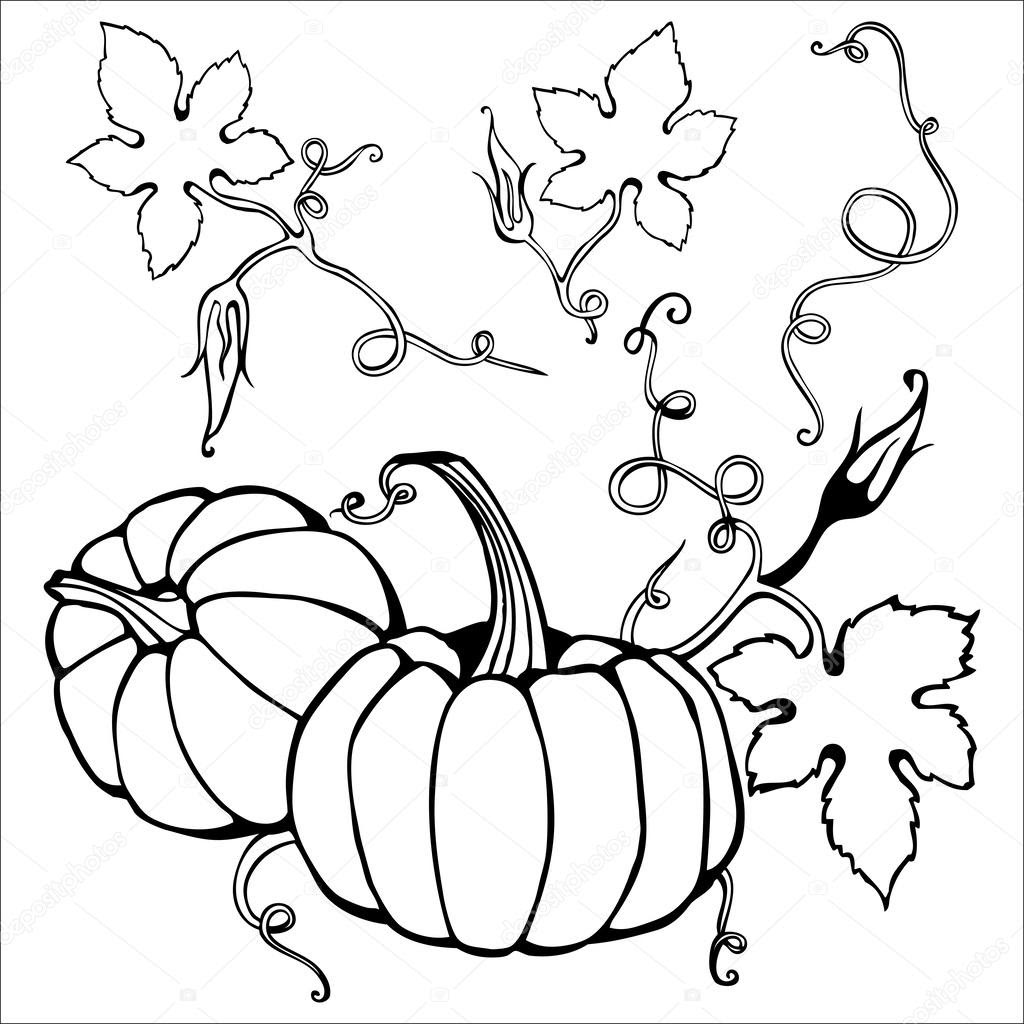 depositphotos_33782505 Hand drawn pumpkin and creepy plant elements