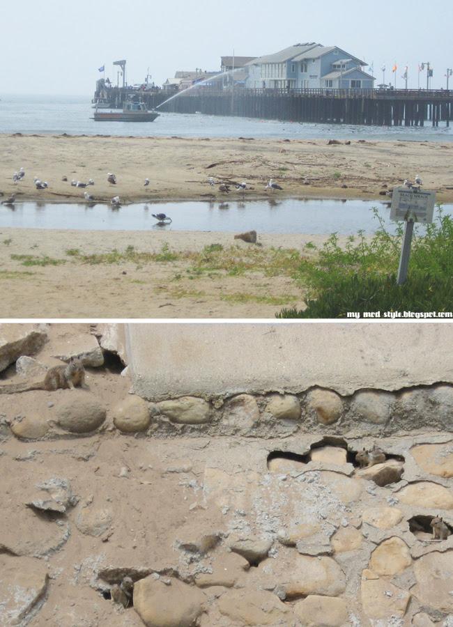 Santa Barbara CA collage 3