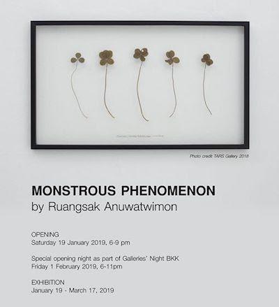 Monstrous Phenomenon