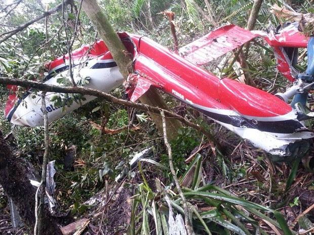 Helicóptero que caiu em Bertioga é do modelo esquilo (Foto: Divulgação / Polícia Militar)