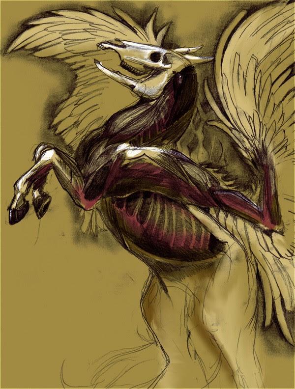 Anatomie de Pégase