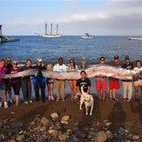 news-odd-20131015-US-ODD--Giant.Fish