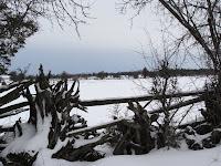 Landscape on 2 February 2008