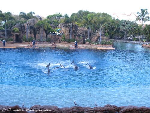 Sea World, Gold Coast Australia