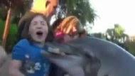 Dolphin Bites 8-Year-Old Girl at Sea World (ABC News)