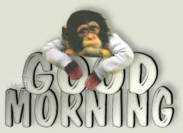 god morning gif