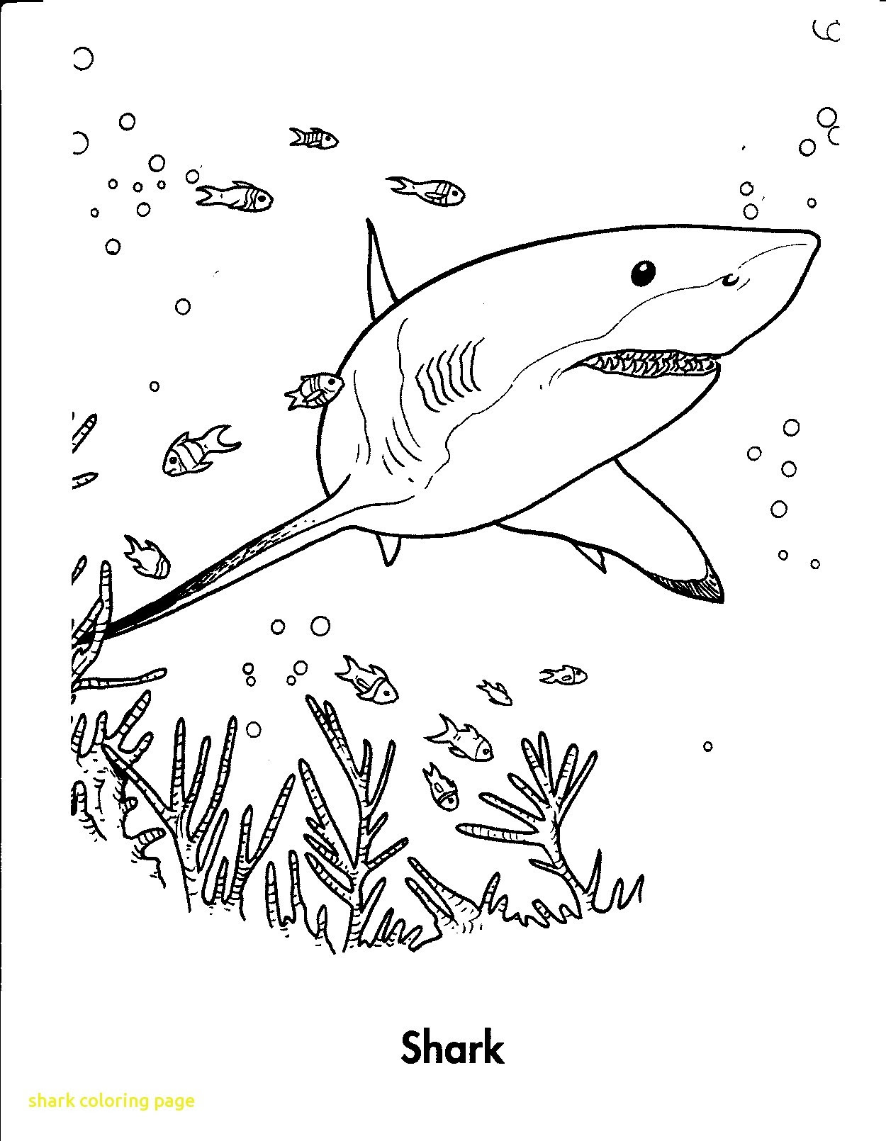 Sharkboy And Lavagirl Coloring Pages at GetDrawings | Free ...