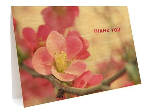 Flowering Quince Folded Thank You Card ? Wedding « Night