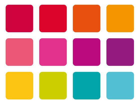 ¿De verdad puedes ver todos los colores?
