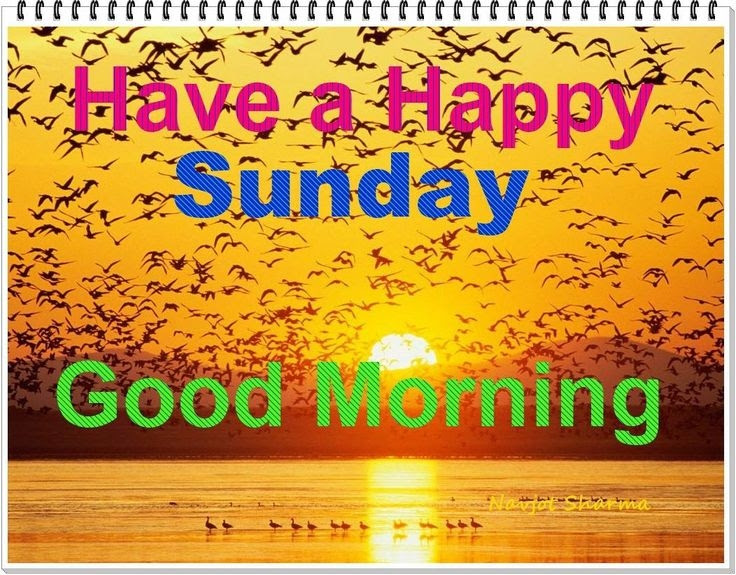 Have A Happy Sunday Pictures Photos And Images For Facebook