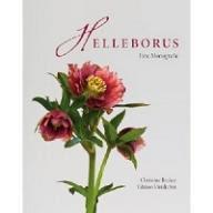 Becker Helleborus