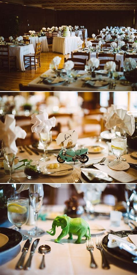 20 best images about Weddings at Brookfield Zoo on Pinterest