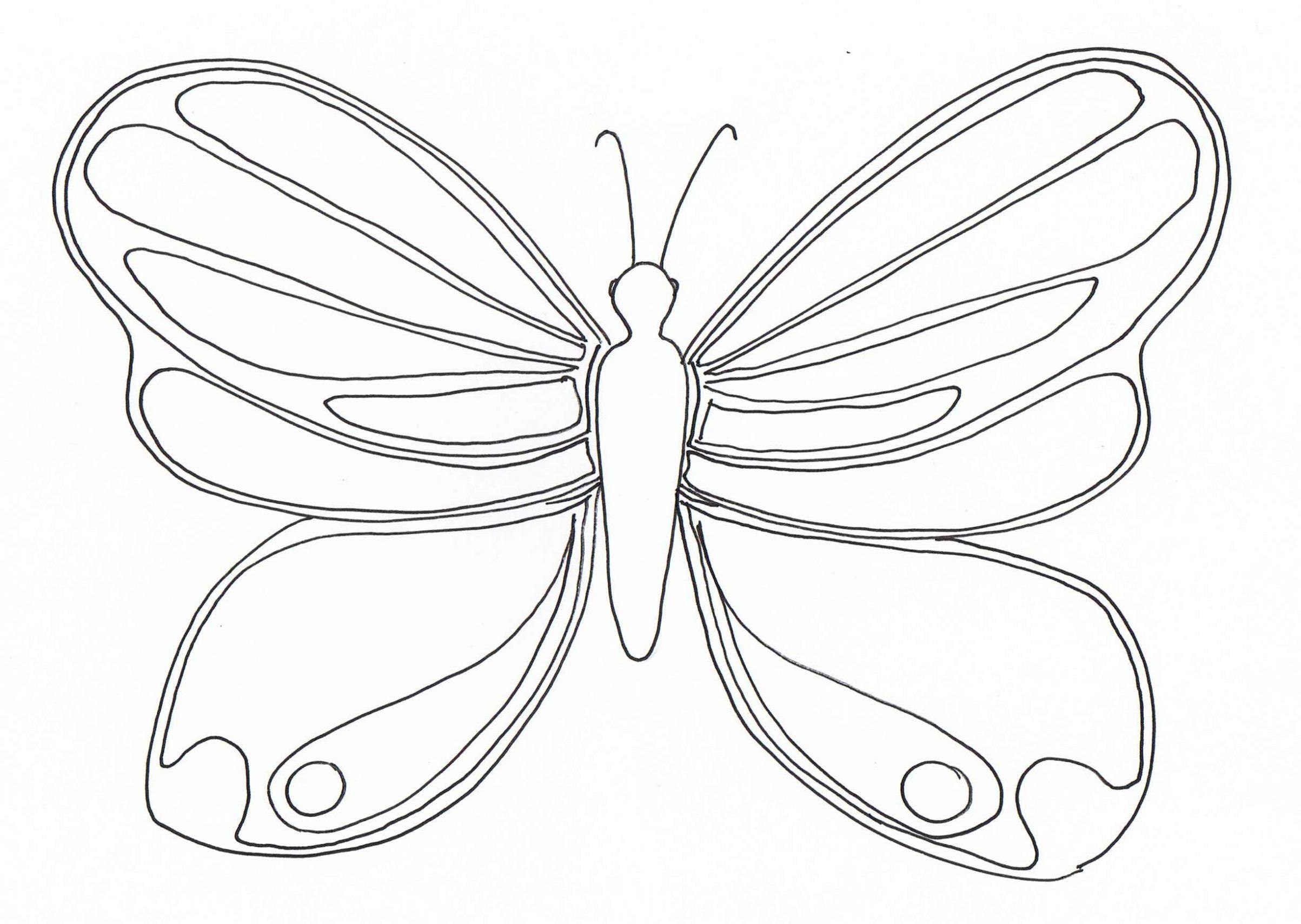 Dibujo De Mariposas Para Colorear Dibujos Infantiles De Mariposas